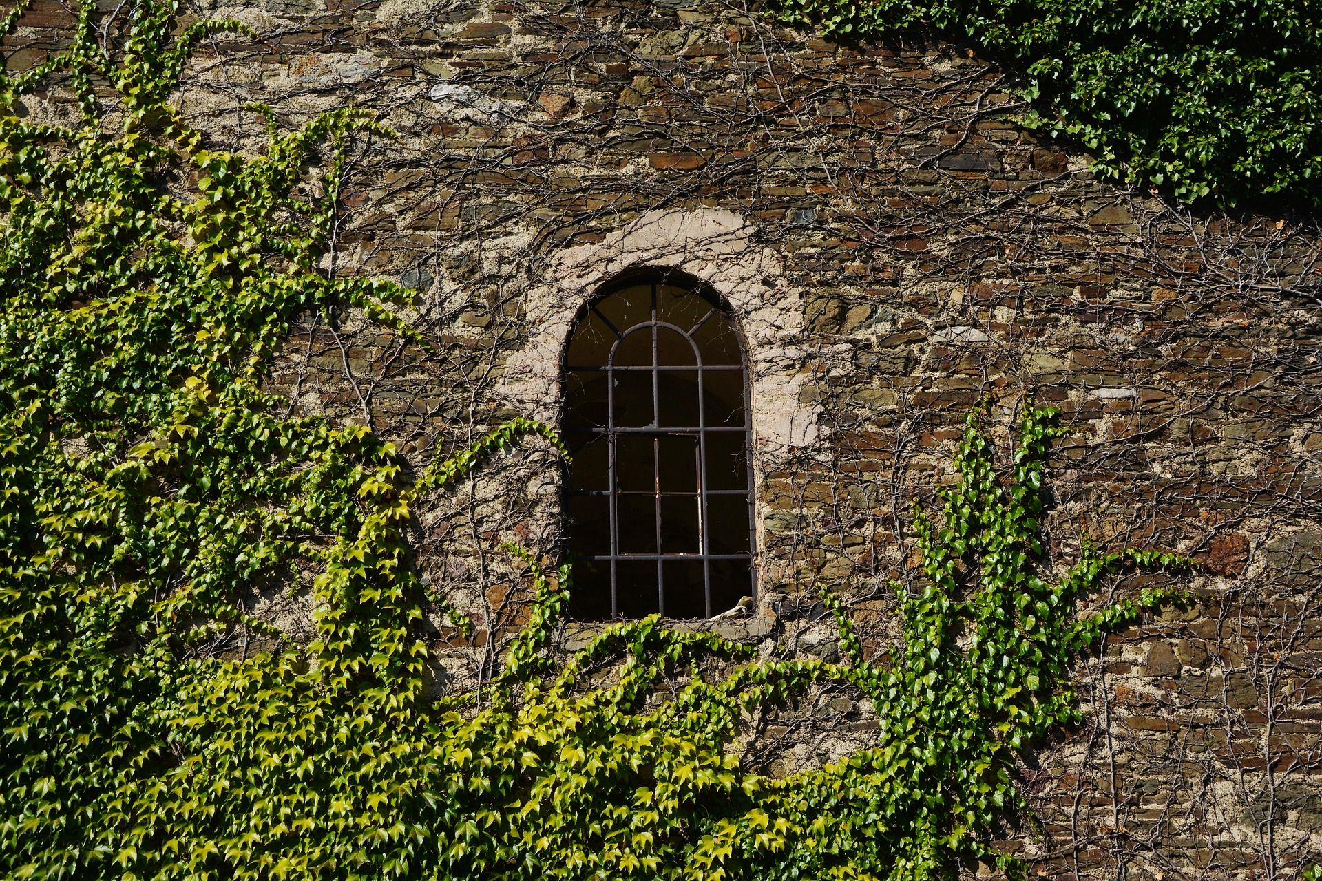 A 16th Century Stone Window