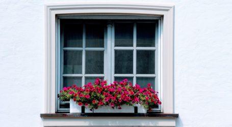 Window with flowerbox