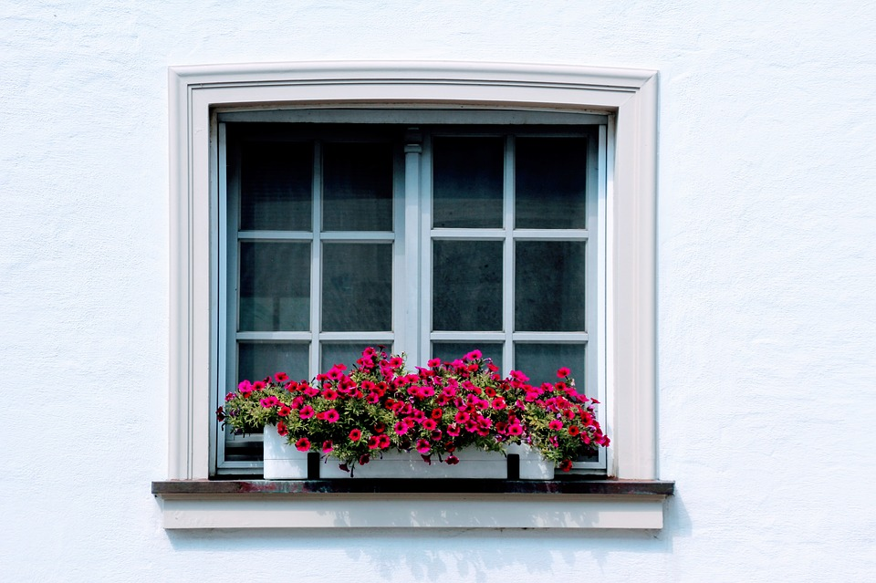 Window with flowerbox